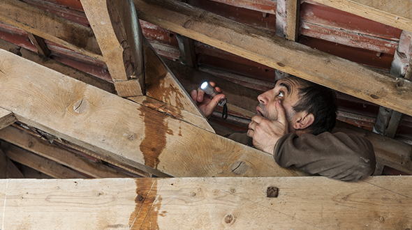 Stopping a roof leak in the rain and finding the source in the attic