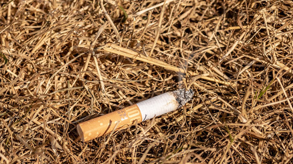 Wildfire causes discarded lit cigarette